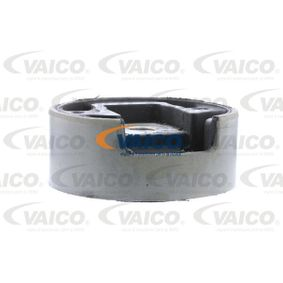 Touran 1T1, 1T2 1.9TDI Motorlager VAICO V10-1558 (1.9TDI Diesel 2006 BXE)