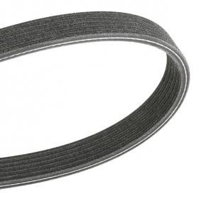 V-Ribbed Belts 6PK1195 Clio 4 (BH_) 1.5 dCi 90 MY 2015