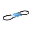 DAYCO Keilriemen 13A0925C für AUDI COUPE (89, 8B) 2.3 quattro ab Baujahr 05.1990, 134 PS