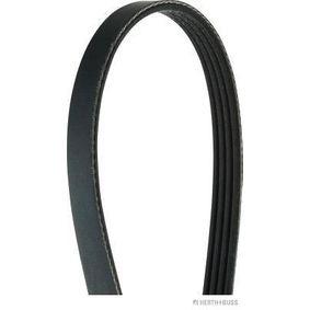 V-Ribbed Belts Length: 800mm, Number of ribs: 4 with OEM Number 38920-P1K-E02