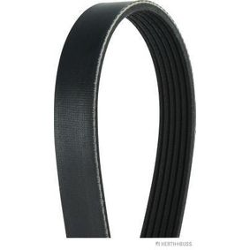 V-Ribbed Belts Length: 1050mm, Number of ribs: 6 with OEM Number 5750 WY