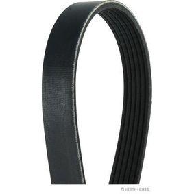 V-Ribbed Belts Length: 1050mm, Number of ribs: 6 with OEM Number 5750-PN