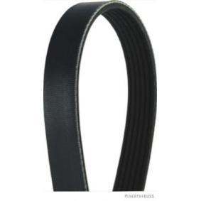 V-Ribbed Belts Length: 2083mm, Number of ribs: 6 with OEM Number 008 997 37 92
