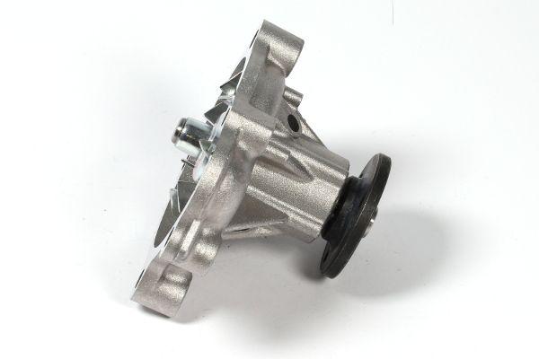 Vandpumpe GK 980753 ekspertviden