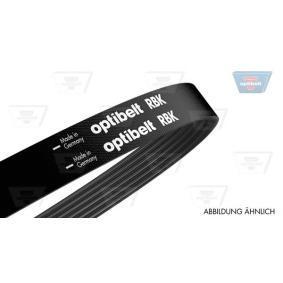 V-Ribbed Belts 6 PK 1200 Note (E11, NE11) 1.5 dCi MY 2010