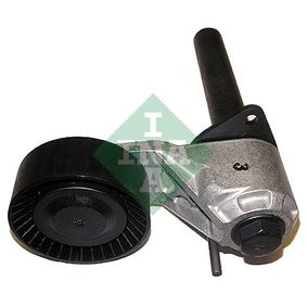 Tensor de la Correa Trapecial Poli V BMW X5 (E70) 3.0 d de Año 02.2007 235 CV: Tensor de correa, correa poli V (534 0401 10) para de INA