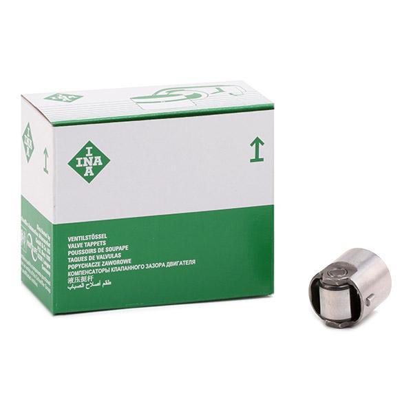 Ωστήριο, αντλία υψηλής πίεσης INA 711024410 ειδική γνώση
