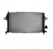 OEM Radiador, refrigeración del motor DELPHI TSP0524025