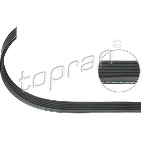 V-Ribbed Belts 100 587 SCIROCCO (137, 138) 2.0 TSI MY 2014
