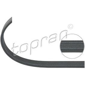 Renault Kangoo kc01 1.6 Keilrippenriemen TOPRAN 401 218 (1.6 Benzin 2001 K7M 746)