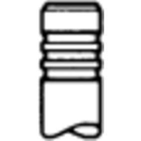Auslassventil 539029 TWINGO 2 (CN0) 1.2 16V Bj 2014