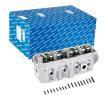OEM Zylinderkopf KOLBENSCHMIDT 3118127 für VW