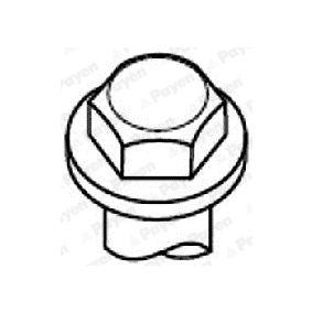 Bolt Kit, cylinder head HBS052 PANDA (169) 1.2 MY 2012