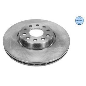 Bremsscheibe Bremsscheibendicke: 25mm, Lochanzahl: 5, Ø: 312mm mit OEM-Nummer 1K0 615 301AA