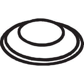 Dichtung, Abgasrohr mit OEM-Nummer 1469973001