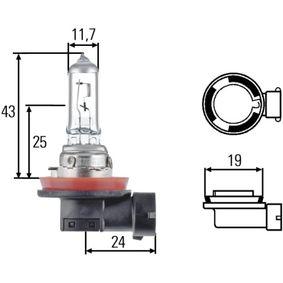 Glühlampe, Hauptscheinwerfer H11, PGJ 19-2, 55W, 12V 8GH 008 358-151