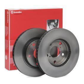 Brake Disc 09.9185.11 RAV 4 II (CLA2_, XA2_, ZCA2_, ACA2_) 2.4 4WD MY 2003