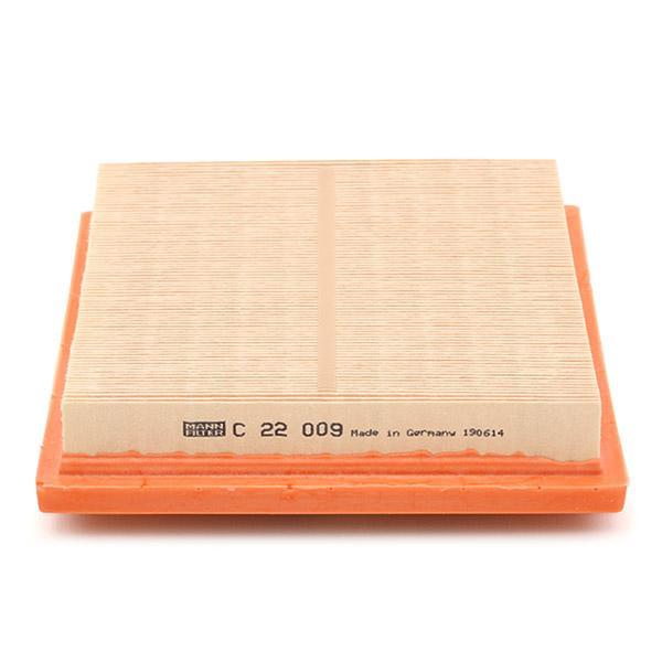 Air Filter MANN-FILTER C 22 009 4011558028336