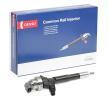 OEM Injector Nozzle DENSO DCRI106130