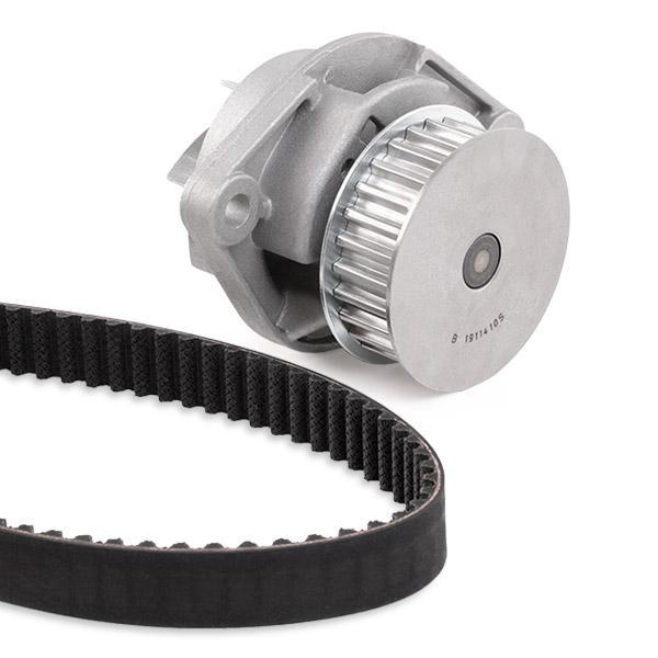 Timing belt and water pump kit INA 530 0089 31 4005108817587