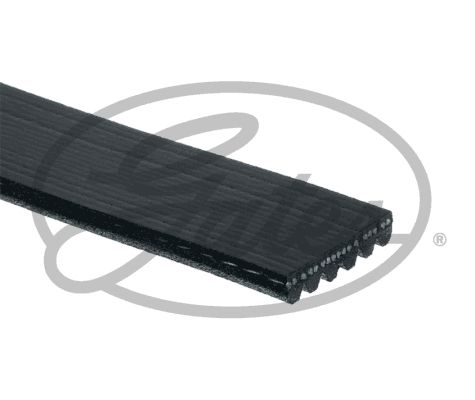 Ribbed Belt GATES 6PK1005 rating