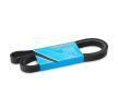 MAPCO Keilrippenriemen 261890 für AUDI A6 (4B, C5) 2.4 ab Baujahr 07.1998, 136 PS