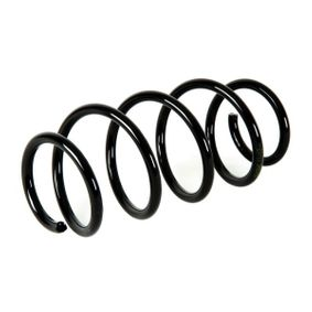 Coil Spring Article № SS025MT £ 150,00