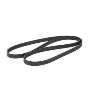 V-Ribbed Belts Length: 2080mm, Number of ribs: 6 with OEM Number 1 013 202