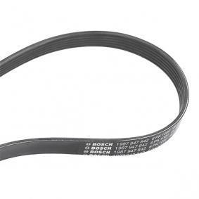 V-Ribbed Belts 1 987 947 842 OCTAVIA (1U2) 1.6 MY 2001