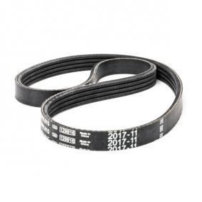 V-Ribbed Belts Length: 815mm, Number of ribs: 4 with OEM Number 38920P1KE02