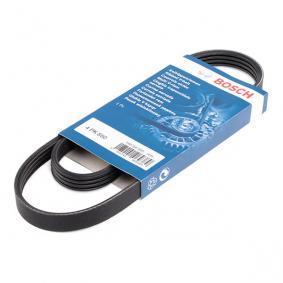 V-Ribbed Belts Article № 1 987 947 895 £ 140,00