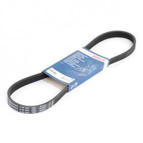 V-Ribbed Belts 1 987 947 912 RAV 4 II (CLA2_, XA2_, ZCA2_, ACA2_) 2.0 D 4WD (CLA20_, CLA21_) MY 2002
