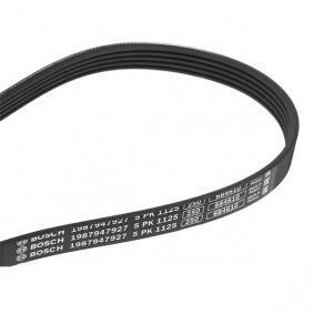 V-Ribbed Belts 1 987 947 927 RAV 4 II (CLA2_, XA2_, ZCA2_, ACA2_) 2.0 D 4WD (CLA20_, CLA21_) MY 2001