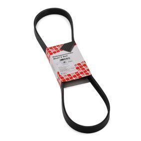 V-Ribbed Belts 37533 SCIROCCO (137, 138) 2.0 TDI MY 2013