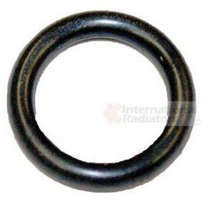 Seal, coolant tube 99002815 PANDA (169) 1.2 MY 2020