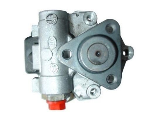 Steering Pump 54280 SPIDAN 54280 original quality