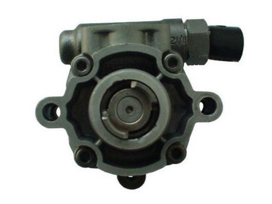 Servo pump SPIDAN 54496 rating