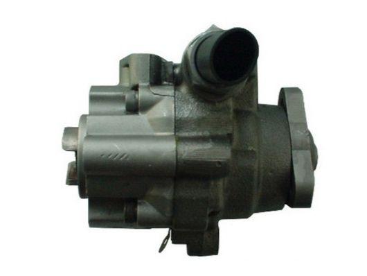 Hydraulic steering pump SPIDAN 54496 expert knowledge