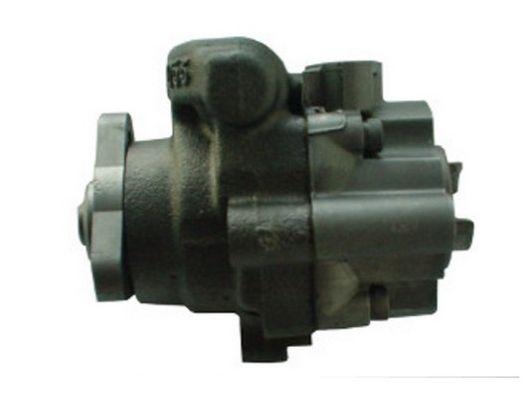 Hydraulic steering pump SPIDAN 54496 4019064326212