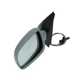 Außenspiegel mit OEM-Nummer 6N1857521J