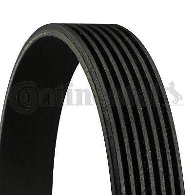 CONTITECH  7PK1687 V-Ribbed Belts Length: 1687mm, Number of ribs: 7