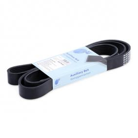 BLUE PRINT  AD07R1687 Keilrippenriemen Länge: 1687mm, Rippenanzahl: 7