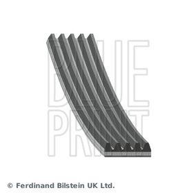 V-Ribbed Belts Length: 1775mm, Number of ribs: 5 with OEM Number 0019933396