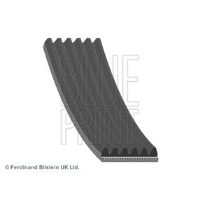 V-Ribbed Belts Length: 2155mm, Number of ribs: 6 with OEM Number 11 28 7 789 985