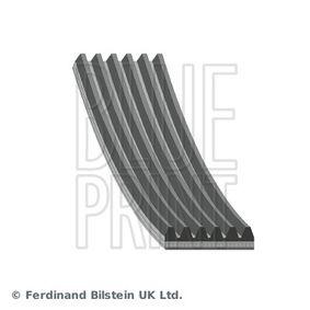 V-Ribbed Belts AD06R975 3 (BL) 1.6 MZR CD MY 2013