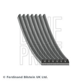 V-Ribbed Belts AD07R1645 CIVIC 8 Hatchback (FN, FK) 2.2 CTDi (FK3) MY 2008