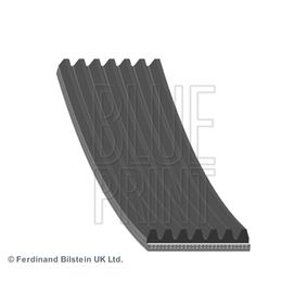 V-Ribbed Belts Length: 2264mm, Number of ribs: 7 with OEM Number 38920RBDE02