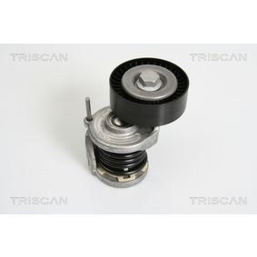 TRISCAN Spannarm, Keilrippenriemen 8641 293021 für AUDI A4 (8E2, B6) 1.9 TDI ab Baujahr 11.2000, 130 PS