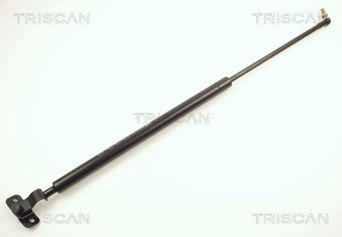 Heckklappendämpfer 8710 13211 TRISCAN 8710 13211 in Original Qualität