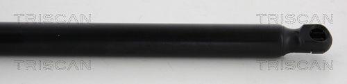 Gasdruckfeder TRISCAN 8710 24242 Bewertung